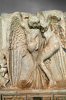 Close up of a Roman Sebasteion relief  sculpture of Leda and swan, Aphrodisias Museum, Aphrodisias, Turkey.  Against a grey background.<br /> <br /> Zeus disguised as a swan assaults Spartan princess Leda. The bird stands on the tips of its outspread wings and presses its webbed foot on the thigh of modest, struggling Leda. The swan is supported from behind a small Eros. From this encounter came a large egg from which were born Helen and the Dionskouroi twins, Kastor and Polydeukes