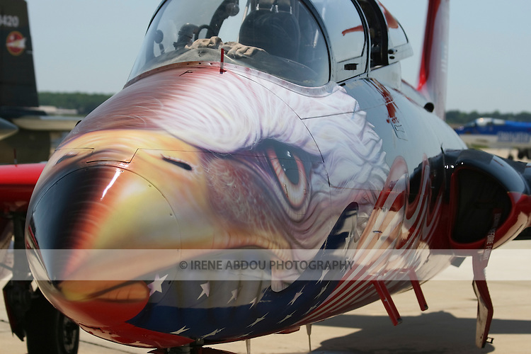 A fighter plane on display at the Joint Service Open House at Andrews Air Force Base in Maryland is painted with the bald eagle, the national emblem of the United States.