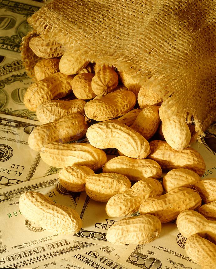 Peanuts on U.S. currency, it costs peanuts, cheap
