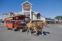 Horse drawn trolley transports tourists in downtown, Ketchikan, Alaska.