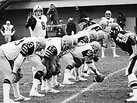 Dave Marler Hamilton Tiger Cats quarterback 1980. Copyright photograph Scott Grant/