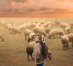 A girl with rose's collar and a long hair looking to camera with sheeps on background. Photo by Sanad Ltefa
