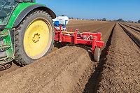 Triple bed tiller incprporating Vydate for PCN control - Norfolk, March
