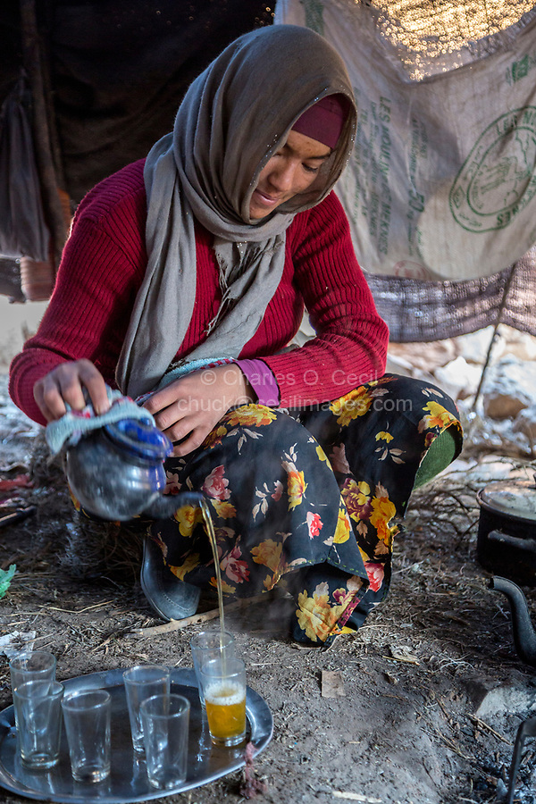 Todra Gorge, Morocco.  Amazigh Berber Girl Pouring  Tea for Guests  inside her Tent.