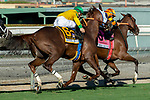 """ARCADIA, CA. SEPTEMBER 29: #6 Vasilika, ridden by Flavien Prat, begins to make up ground on  #8 Cambodia, ridden by Drayden Van Dyke, in the stretch of the Rodeo Drive Stakes (Grade l) """"Win and You're in Breeders Cup Juvenile Fillies Division"""" on September 29, 2018, at Santa Anita Park in Arcadia, CA. (Photo by Casey Phillips/Eclipse Sportswire/CSM)"""