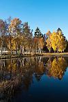 Germany, Upper Bavaria, Bad Bayersoien: autumn scenery at Soier Lake | Deutschland, Bayern, Oberbayern, Herbstlandschaft bei Bad Bayersoien am Soier See