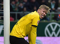 22.02.2020, xblx, Fussball 1.Bundesliga, SV Werder Bremen - Borussia Dortmund emspor, v.l. Erling Haaland Borussia Dortmund DFL/DFB REGULATIONS PROHIBIT ANY USE OF PHOTOGRAPHS as IMAGE SEQUENCES and/or QUASI-VIDEO Bremen *** 22 02 2020, xblx, Fussball 1 Bundesliga, SV Werder Bremen Borussia Dortmund emspor, v l Erling Haaland Borussia Dortmund DFL DFB <br /> Photo Imago/Insidefoto <br /> ITALY ONLY
