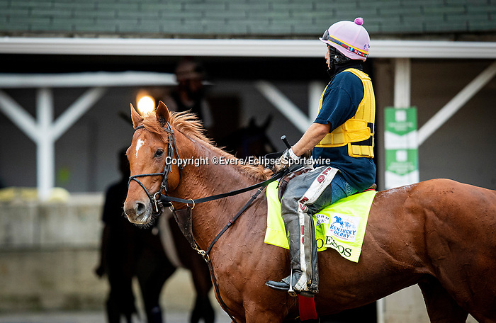 April 28, 2021: O Besos walks the shed row in preparation for the Kentucky Derby at Churchill Downs in Louisville, Kentucky on April 28, 2021. EversEclipse Sportswire/CSM