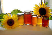Barattoli di miele. Jars of honey..