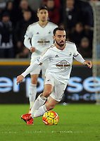 Leon Britton of Swansea during the Barclays Premier League match between Swansea City and West Bromwich Albion played at the Liberty Stadium, Swansea on December 26 2015