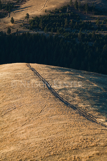 The Pengally Trail along a ridge line on Mount Sentinel in Missoula, Montana