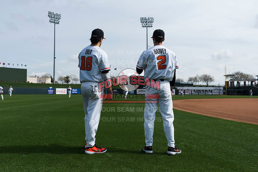 Oregon State Beavers infielders Ryan Ober (18) and Jake Harvey (2) warm up before a game against the New Mexico Lobos on February 15, 2019 at Surprise Stadium in Surprise, Arizona. Oregon State defeated New Mexico 6-5. (Zachary Lucy/Four Seam Images)