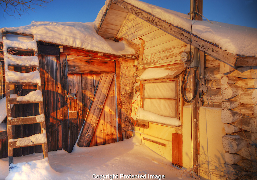 Snow blanket on old log cabin in Willow Flats
