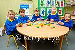 Junior infants class of Muinteoir Máire Uí Chínnéide in Scoil Ceann Tra on Tuesday, l to r: Ronán Ó Duinín, Dara MacAonghusa, Rhys Ó Caoimh, Daisy McGeoghan Ní Loingsigh and Annabel Adam.