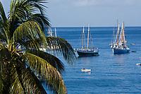 France/DOM/Martinique/Saint-Pierre: Palmiers et voiliers dans la baie