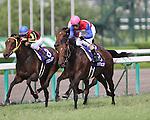 Nakayama Festa beats champion Buena Vista in the 51st Takarazuka Kinen at Hanshin Racecourse