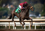 January 03, 2021: Roman Centurain with Juan Hernandez wins a maiden race at Santa Anita Park in Arcadia, California on January 3, 2021. Evers/Eclipse Sportswire/CSM