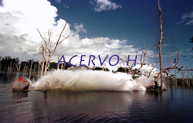 """¡rvore escolhida por mateiros tomba no lago que se formou apÛs a construÁ""""o da represa. Depois mergulhadores ir""""o cortar o tronco submerso para aproveitar toda a madeira. TucuruÌ - Par· - Brasil<br /> 27/04/2000. <br /> ©FOTO: PAULO SANTOS/INTERFOTO<br /> Negativo Cor 135 N∫ 5455 T2 F17"""