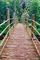 Bamboo bridge in National Tropical Botanical Garden. Kauai, Hawaii