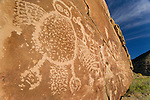 Petroglyphs in Nine Mile Canyon, Utah