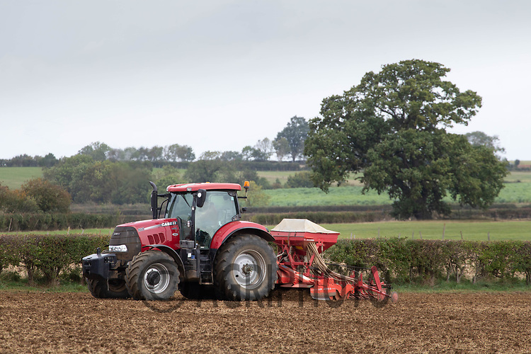 30.9.2020 Drilling Winter cereals in Lincolnshire <br /> ©Tim Scrivener Photographer 07850 303986<br />      ....Covering Agriculture In The