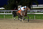 January 16, 2016: Mo Tom with Corey J. Lanerie up in the Lecomte Stakes in New Orleans Louisiana. Steve Dalmado/ESW/CSM