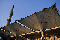 Intricate patterned roof and exterior of the Al-Hussein Mosque, Cairo, Egypt.
