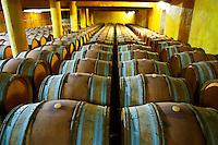 Domaine du Mas de Daumas Gassac. in Aniane. Languedoc. Barrel cellar. France. Europe.