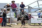 2013 Richmond Rodeo, Richmond Show Grounds, 19 January 2013, Photo by Marc Palmano/Shuttersport
