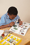 8 year old boy at home working on categorizing rocks in rock collection using magnifying glass and photographs from book