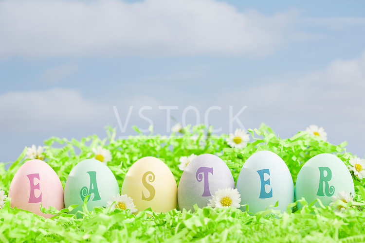 Easter eggs arranged in row in grass