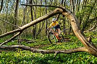 A mountain biker Daniel Breece rides a single track trail through the Änggårdsbergen Nature Reserve, Gothenburg, Sweden