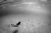 Snorkeler swims over sandy bottom (black/white) with sun rays, Bonaire, Netherland Antilles, Caribbean Sea, Atlantic Ocean, MR