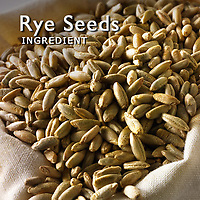 Rye Seed Pictures | Rye Seed Photos Images & Fotos