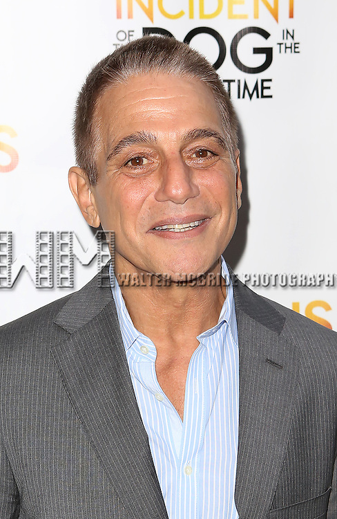 Tony Danza attends the Broadway Opening Night Performance of 'The Curious Incident of the Dog in the Night-Time'  at the Barrymore Theatre on October 5, 2014 in New York City.
