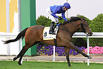 February 20, 2021: GIFTS OF GOLD #9 ridden by Pat Cosgrave wins The Red Sea Turf Handicap for Speed Bin Suroor giving team Godolphin a double on Saudi Cup Day, King Abdulaziz Racecourse, Riyadh, Saudi Arabia. Shamela Hanley/Eclipse Sportswire/CSM