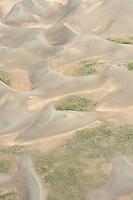 Great Sand Dunes National Park. June 2014. 85482