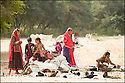 2006- Inde- désert du Rajasthan, jeunes bergères.