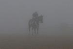 Rachel Alexandra working in the fog Friday morning