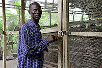 NIGERIA, Oyo State, Ibadan, Dorf Ilora, Legehennenhaltung, FADU Farmer Joshua Olajide Olufeme