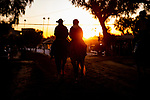 OCT 26: Scenes from morning workouts, at Santa Anita Park in Arcadia, California on Oct 26, 2019. Evers/Eclipse Sportswire/Breeders' Cup