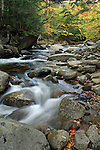 Autumn view of the Bear River, Grafton Notch State Park, Maine, USA