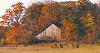 """""""Hay Bales in Fall""""  Washington Island  Wisconsin 