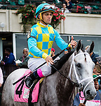 ELMONT, NY - OCTOBER 08: Javier Castelano, atop Son of a Saint #4, during post parade of the Winthrop University Hospital's Breast Health Center Race, on Jockey Club Gold Cup Day at Belmont Park on October 8, 2016 in Elmont, New York. (Photo by Douglas DeFelice/Eclipse Sportswire/Getty Images)