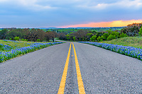 Roadside Bluebonnet with Stormy Sunset - We were leaving the area when we noticed that the at the base of the clouds some color was shinning through at sunset and the road was lined with nice bluebonnets so we stoppped and captured this photo.  We like the way this road curved as we were climbing out and it look kinda of cool so we stopped to capture the sunset from this point of view.  You never know when an opportunity in the Texas Hill Country will happen so you got to capture it when you can.  We love the texas wildflowers and we drive a great distance to find them and the texas hill country is one of our favorite places to visit. Also in a pano.