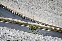 Bauke Mollema (NED/Trek-Segafredo) & Kenny Elissonde (FRA/Trek - Segafredo) trying to catch Wout van Aert down the Mont Ventoux<br /> <br /> Stage 11 from Sorgues to Malaucène (199km) running twice over the infamous Mont Ventoux<br /> 108th Tour de France 2021 (2.UWT)<br /> <br /> ©kramon