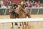HOT SPRINGS, AR - JANUARY 16: Hence #1 with Ramon Vazquez aboard winning the 7th race on Martin Luther King Day which made the 500th win for trainer Steve Asmusssen at Oaklawn Park on January 16, 2017 in Hot Springs, Arkansas. (Photo by Justin Manning/Elipse Sportwire/Getty Images)