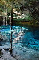 Chikin Ha Cenote, Playa del Carmen, Riviera Maya, Yucatan, Mexico.