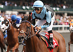 April 04, 2014: Rapscallion and Alan Garcia win the 4th race at Keeneland on opening day, Allowence $60,000 for four year olds and up.  Candice Chavez/ESW/CSM