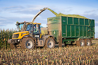 Harvesting forage maize for anaerobic digestion - October, Lincolnshire